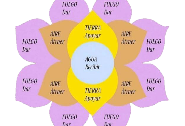 A flower diagram showcasing different levels of the telar.